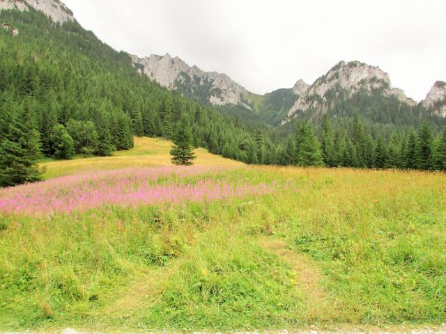 Dolina Kościeliska - atrakcje i szlaki
