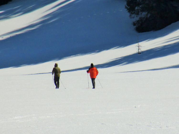 narty biegówki w okolicach Zakopanego