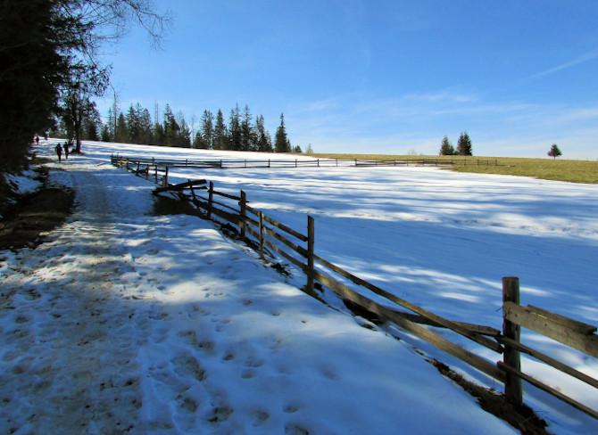 Nordic walking pod Tatrami